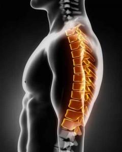 Negativer Einfluss auf die Wirbelsäule durch Fehlfunktionen des Kiefergelenks